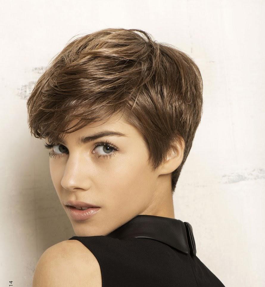 Kapsels En Haarverzorging Prachtige Vrouwelijke Korte Kapsels Winter 2015 Female Short Haircuts Winter 2015
